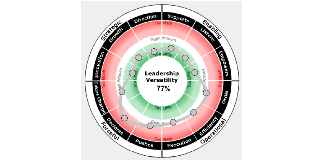 An image of Antoinette Oglethorpe's favourite 360 Degree Feedback Tool, the LVI index