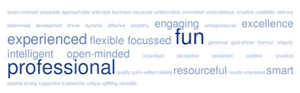 word cloud: fun, experienced, flexible, focussed, professional